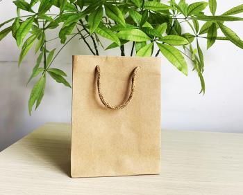 Túi giấy đựng sản phẩm 13